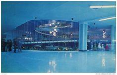 Interior del Galgódromo.