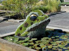 Frog in Lily Pond Plant Sculpture Topiary Art Garden - Modern Design Garden Frogs, Water Garden, Amazing Gardens, Beautiful Gardens, Topiary Garden, Grass Flower, Pond Plants, Lily Pond, Plant Art
