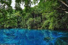 Nola travelled to the Matevulu Blue Hole located on Espiritu Santo island, Vanuatu...