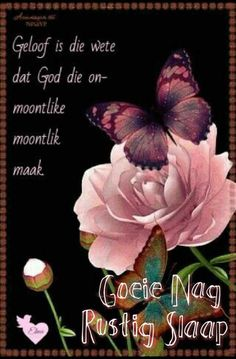 Good Night Greetings, Good Night Messages, Morning Greetings Quotes, Good Night Quotes, Afrikaanse Quotes, Good Night Blessings, Goeie Nag, Christian Messages, Inspirational Verses