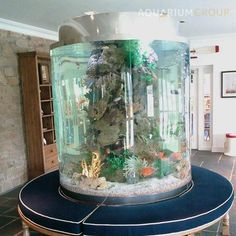 large round fish tank with seating