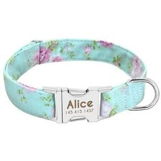 Dog Collar Tags, Puppy Collars, Dog Collars & Leashes, Collar And Leash, Dog Leash, Nylons, Cat Dog, Dog Id, Custom Pet Collars