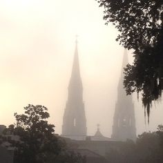 Cathedral of St. John the Baptist in the morning fog…