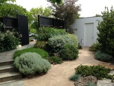 Front Yard Garden Design Front entrance to Cameron Paterson's Australian garden