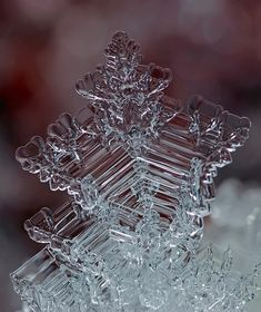 Snowflakes Macro Photography - Russian photographer Andrew Osokin is able to give us impressive macroscopic snapshots of the beautiful and unique structure of snowflakes