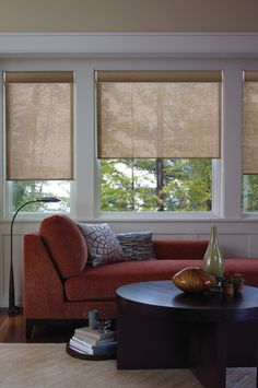 Exotic roller shade makes operation convenient.