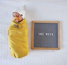 Birth Announcement Template Boy Design Birth Announcement With Dog Photo Ideas Key: 8814799293 Newborn Pictures, Baby Pictures, Baby Photos, Milestone Pictures, Baby Monat Für Monat, 6 Month Baby Picture Ideas, Foto Newborn, Newborn Room, Vogue Kids