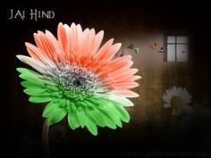 🇮🇳 The struggle for Independence shows the unity of our Nation. This is a day of freedom. This is a historical day for all of you and the amazing country of India. Independence Day Hd Wallpaper, Independence Day Pictures, 15 August Independence Day, India Independence, Happy 15 August, August 15, August Pictures, Indian Flag, Indian Army