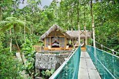 Pacuare Lodge, Costa Rica >> I could spend forever here!