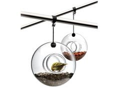 Add Some Life to Your #Garden with These Modern #Bird Feeders! You'll Have Colorful, Singing Residents in No Time!