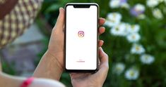 Instagram 101: Understanding the Basics - Techlicious Life Organization, Social Networks, Iphone 7 Plus, Photo And Video, Tips, Zen, Instagram, Social Media, Counseling