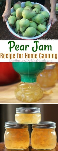 How to Make Pear Jam, Pear Jam Recipe, Pear Canning Recipes, Canning Pears, Jam Recipes Pear Jelly Recipes, Pear Dessert Recipes, Recipes For Pears, Pear Recipes For Canning, Tomato Canning Recipes, Freezer Jam Recipes, Canning Tomatoes, Canning Jam Recipe, Canning Pears