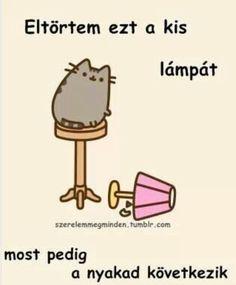 Pusheen Cat, Nyan Cat, Grumpy Cat, Cats Tumblr, Funny Moments, Funny Images, Girly Things, Haha, Jokes