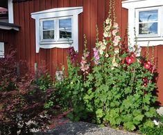 Love Garden, Home And Garden, The Constant Gardener, Sweden House, Red Houses, Outdoor Retreat, Garden Cottage, Front Yard Landscaping, Garden Projects