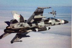 F/A-18A VFC-12  Fighting Omar's
