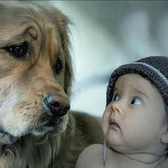 Kids & dogs classic look dogs and puppies dogs, funny animal Dogs And Kids, Animals For Kids, Animals And Pets, Baby Animals, Funny Animals, Cute Animals, Love My Dog, Cute Kids, Cute Babies