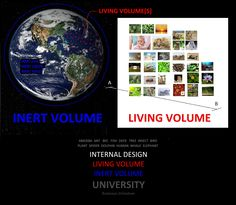 INTERNAL DESIGN + LIVING VOLUME + INERT VOLUME UNIVERSITY - SIGNBOARD