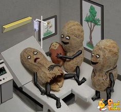 Funny pictures about Congratulations. it's a peanut! Oh, and cool pics about Congratulations. it's a peanut! Also, Congratulations. it's a peanut!