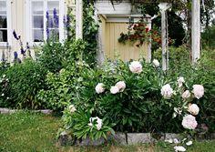 Med en detaljert plan for hagen ble det gjengrodde villnisset til en vakker oase. Farger, sitteplasser, stier - ingenting ble overlatt til tilfeldighetene.