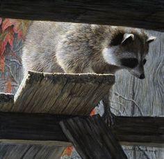 "Robert Bateman  ""The Prowler - Raccoon"""