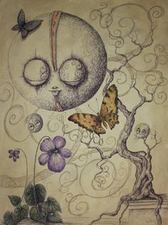 Butterfly Dreams Drawing