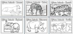 Geography Resources - Teaching about Africa. Worksheets, colouring pages and posters for an Africa Topic Kindergarten Social Studies, Teaching Social Studies, African Animals, African Safari, Animal Coloring Pages, Colouring Pages, Grade R Worksheets, Grade 1 Art, North American Animals