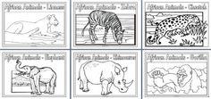 african animals habitat biome savanna colouring page. Black Bedroom Furniture Sets. Home Design Ideas