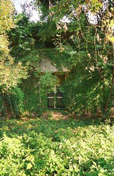 abandoned_beigun_japan