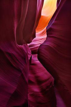 Desert Symphony by Brandt Campbell, via 500px