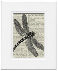 dragonfly II  vintage artwork printed on page from by FauxKiss, $10.00