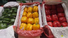 Local Agro Classifieds Peppers (CHINA) green, yellow, orange - VEGETABLES - MOSCOW - FREE INTERNATIONAL CLASSIFIEDS