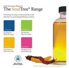 The 4 product ranges of SoulTree