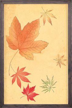 Fluvius Leaves 6