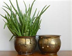 Vintage Planter Set Brass Planters Flower Pots by ModRendition