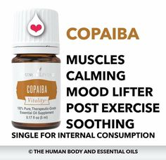 Copaiba, wouldn't be without this oil!! Young Living Oils, Young Living Essential Oils, Copaiba Oil, Mood Lifters, Essential Oils 101, Doterra, Natural Remedies, How To Make Money, Pure Products