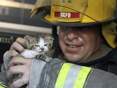This kitten and two siblings were rescued from an apartment fire by Captain John Leahey of Corpus Christi.