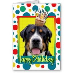 Birthday Cupcake - Greater Swiss Mountain Dog Cards
