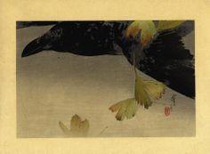 Watanabe Seitei. Crow in flight. c.1916