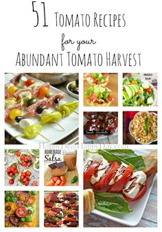 51 Tomato Recipes for Your Abundant Tomato Harvest - from canning to caprese - you'll find something wonderful to make with your fresh garden tomatoes!!  Happydealhappyday.com