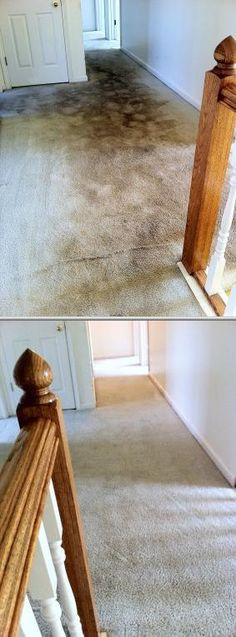 Philip Hunnicutt is an IICRC trained and insured carpet cleaner who provides carpet cleaning services using his powerful carpet cleaning system.