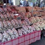 Grower's list: discover hundreds of garlic growers around the U. and Canada, including many small farms that specialize in organic gourmet garlic. Garlic Farm, Small Farm, Farms, Delicious Food, Herb, Spices, Canada, Organic, Garden