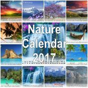 Nature give us to every time inspiration and some seasons of beauties. Here we are sharing best Nature's Desktop Calendar It is attractive and cool. Calendar 2017, Desktop Calendar, Amazing Nature, Calendar For 2017