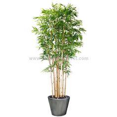 Silk Plants Direct Panda Bamboo Tree - Green - Pack of 1