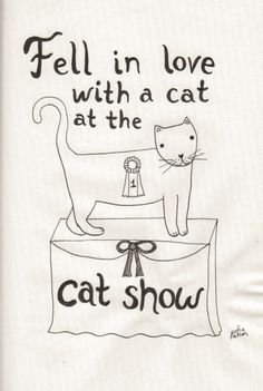 Classic Song Lyrics Significantly Improved By Cats