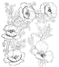 Digital Two for Tuesday: Beautiful Flower Designs for Embroidery or Digital Stamping
