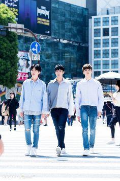 Hoshi, DK, Wonwoo