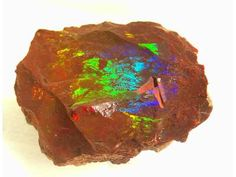 Raw Fire Opal  Google Image Result for http://marq.wikispaces.com/file/view/fire_opal.jpg/30307456/fire_opal.jpg