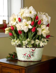 Dramatic red and white bouquet of amaryllis, tulips and star of Bethlehem bulbs. Christmas Floral Arrangements, Beautiful Flower Arrangements, Christmas Flowers, Christmas Decorations, Amaryllis Bulbs, Star Of Bethlehem, Arte Floral, Diy Weihnachten, Christmas Morning