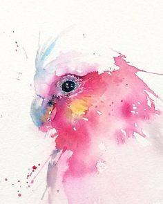 Galah illustration PRINT from my Australian Wildlife watercolour painting - AQUARELL Painting easy Painting ideas Painting water Painting tutorials Painting landscape Painting abstract Watercolor Painting Watercolor Paintings Abstract, Watercolor Canvas, Watercolor Animals, Abstract Watercolor, Painting & Drawing, Artist Painting, Art And Illustration, Watercolour Illustration, Bird Art