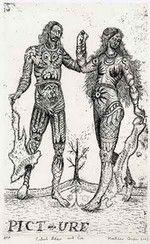 Picts - Scotland Brief History